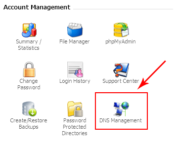 dns_management