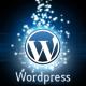 wordpress-optimization